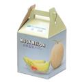 メロン梱包用カラー箱(1個用)
