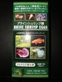 「新品」ブラインシュリンプ卵 100g (20g×5入)
