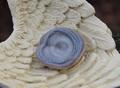 小宇宙の渦巻き⁉ レア石 アヴァロナイト 原石