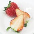 【長崎県】家庭用 モグラの苺 紅ほっぺ・さがほのか・恋みのり 約250g×8パック