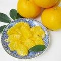 ◎贈答用◎鶴田有機農園の初夏の柑橘4種詰め合わせ3kg