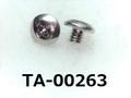 (TA-00263) SUSXM7 トラス + M2x2 パシペート