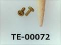 (TE-00072) 真鍮 #00特ナベ [1404] + M0.6x1.5 生地