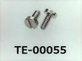 (TE-00055) SUS 特ヒラ [1705] - M0.9x2 先端テーパー 脱脂洗浄