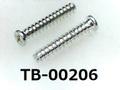 (TB-00206) 鉄 Pタイプ #0-1 ナベ [2505] + 1.7x10 三価白