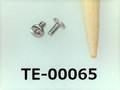 (TE-00065) SUS304 #00特ナベ [1303] +- M0.6x1.3 パシペート
