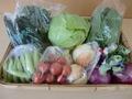 季節の野菜詰め合わせ(1000円分)