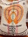 生豆 コロンビア サンチュアリオ・ティピカ  1kg
