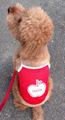 赤メッシュランニングリンゴ お名前刺繍