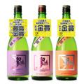 全国燗酒コンテスト2019 受賞酒セット720ml