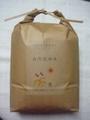 【自然栽培】 コシヒカリ(5kg,玄米)