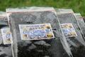 INOCCHIのプリプリ   生もずく 冷凍もずくっち 1袋200g40袋
