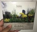 Blake Zweig / Dandelion