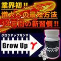 Grow Up γ(グロウアップガンマ)