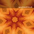Nymphomatriarch(Venetian Snares+Hecate) / Nymphomatriarch