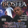 Bosha / What Part Of The Game Is This?