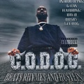 C.O.D.O.G. / Beat$ Rhyme$ And Hu$tlin