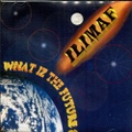 Ilimaf / What Iz The Future ?