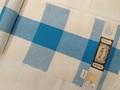 片貝木綿 白×青中格子