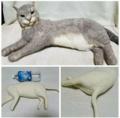 羊毛猫【受注生産】