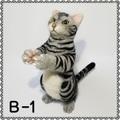 【初販限定価格】羊毛/猫/アメショ B-1