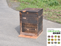 週末養蜂スタートキット