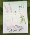 一筆箋 春の花 (大)