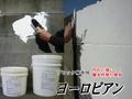 ブロック塀専用塗り壁材                     ヨーロピアン 10kg缶