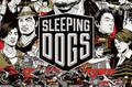 Sleeping Dogs スリーピングドッグス 香港秘密警察 英語版