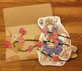 バラカラマリ姫メッセージカードセット