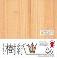 リアルウッド 樹紙 サンブスギ