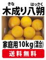 【大浦農園】【送料無料】≪家庭用≫木成り八朔10kg(サイズ混合)