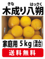 【大浦農園】【送料無料】≪家庭用≫木成り八朔5kg(サイズ混合)