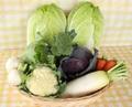 季節野菜のお任せセット-B