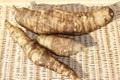 健康野菜「ヤーコン」2kg