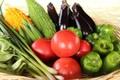 季節野菜のお任せセット-A