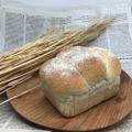 木の型食パン(S)