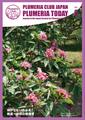【個人協賛予約】プルメリア情報誌「Plumeria Today」 VOL.5 (晩夏〜初秋の管理号・1部送付+協賛つき・送料込)