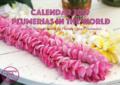【予約受付】2019年版プルメリアカレンダー 'Plumeria in the World' (予約分は送料無料)