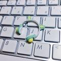 ★★完成品限定 1/12 ネコミミヘッドフォン(緑×黄色)
