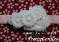 白サンゴ 菊の帯留114