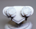 白サンゴ バラのイヤリングS