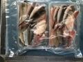 (620)三河の地魚 天種セット