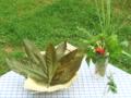 びわの葉(乾燥)20g