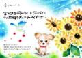 犬の十戒ポストカードno.8