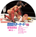 2015.11.3新木場大会DVD