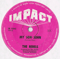 THE REBELS / PASSING YOU BY