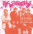 SHEVELLS / BIG CITY LIGHTS