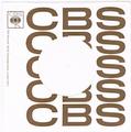 COMPANY SLEEVE (CBS) TYPE 2