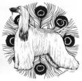 2007 Afghan Hound Plate